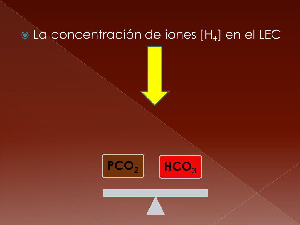 La concentración de iones [H+] en el LEC